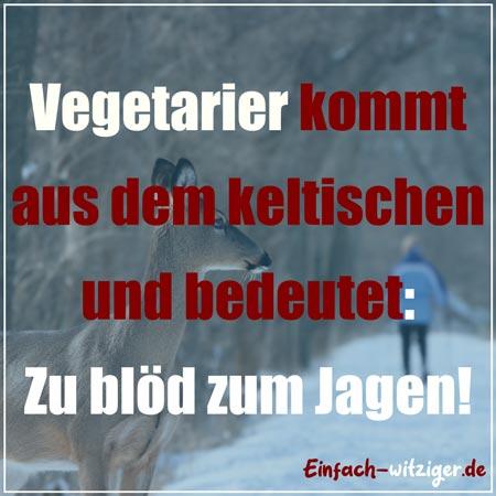 Witzige Spüche und coole Sprüche: Vegetarier kommt aus dem keltischen und bedeutet: Zu blöd zum Jagen. lustige Zitate auf einfach-witziger.de
