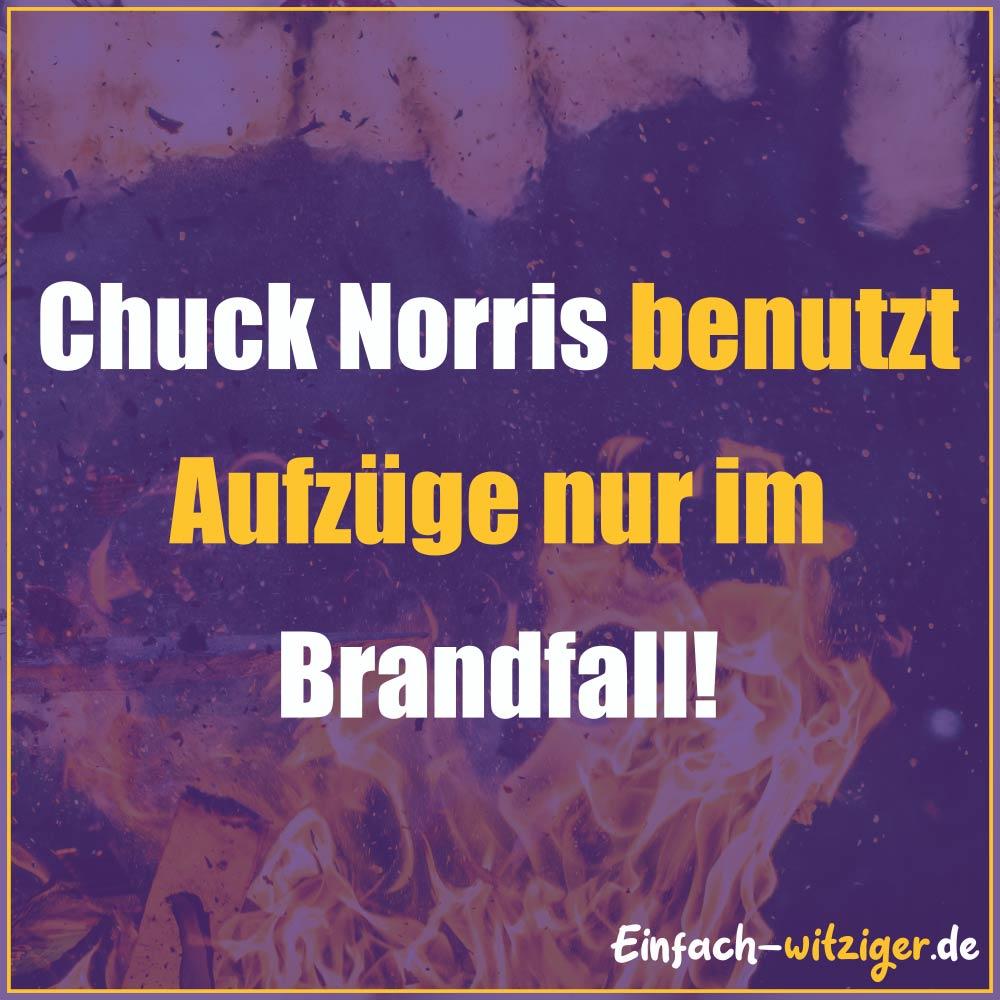 Chuck Norris Chuck Norris Witze Jack Norris chuck noris witze: Chcuk Norris benutzt Aufzüge nur im Brandfall!