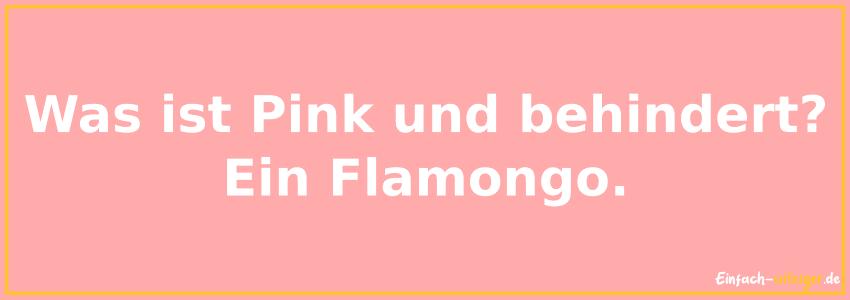 Was ist pink und behindert? ein Flamongo.
