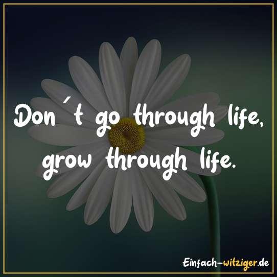 Don´t go through life, grow through life.