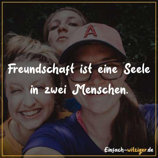 Freundschaft ist eine Seele in zwei Menschen.
