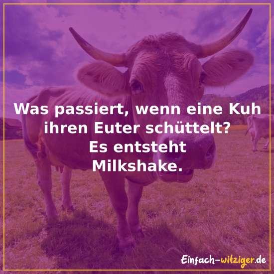 Was passiert, wenn eine Kuh ihren Euter schüttelt? - Es entsteht Milkshake