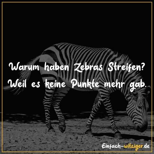 Warum haben Zebras Streifen? Weil es keine Punkte mehr gab.